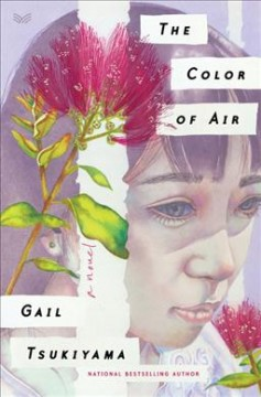The color of air : a novel by Tsukiyama, Gail