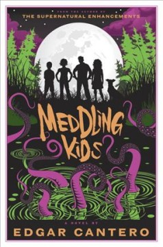 Meddling kids : a novel by Cantero, Edgar