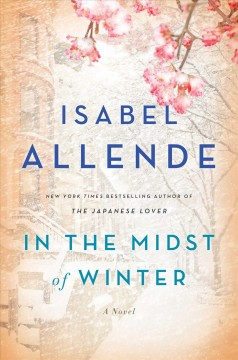 In the midst of winter : a novel by Allende, Isabel