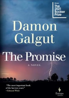The Promise by Galgut, Damon