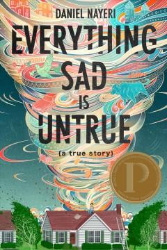 Everything sad is untrue : (a true story) by Nayeri, Daniel