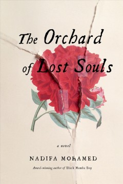 The orchard of lost souls / Nadifa Mohamed