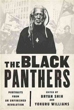 The Black Panthers : portraits from an unfinished revolution by